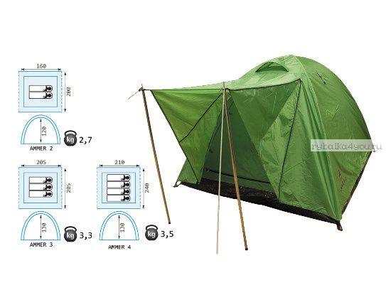 Палатка Reisen Ammer 2  (woodland)